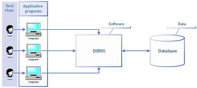 Figure 2.1 The DBMS