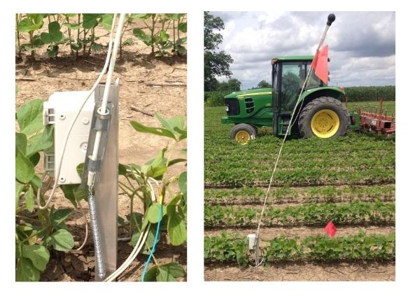 Figure 2 . Close-up (Left) and complete view (Right) of field datalogger and radio/antenna mount installed in a soybean field