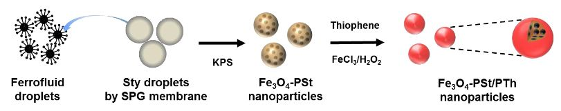 Figure 1. A schematic illustration of the preparation of Fe 3 O 4 nano particles-embedded