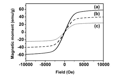 Figure 3. Magnetization hysteresis loops